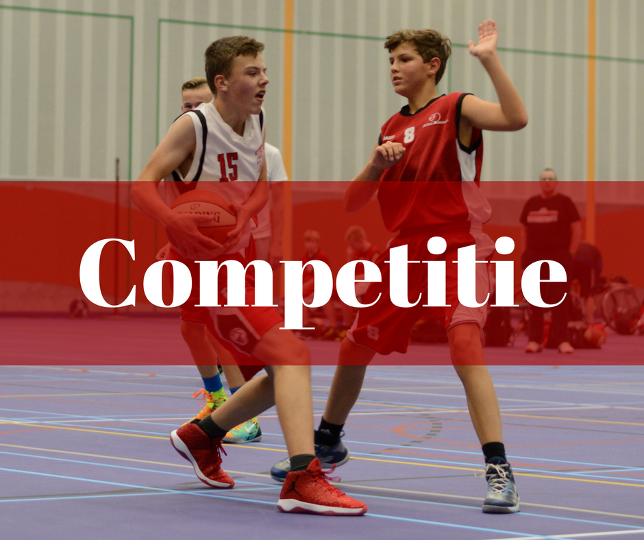 HBV Hornets - Competitie